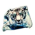 PLAID tigre